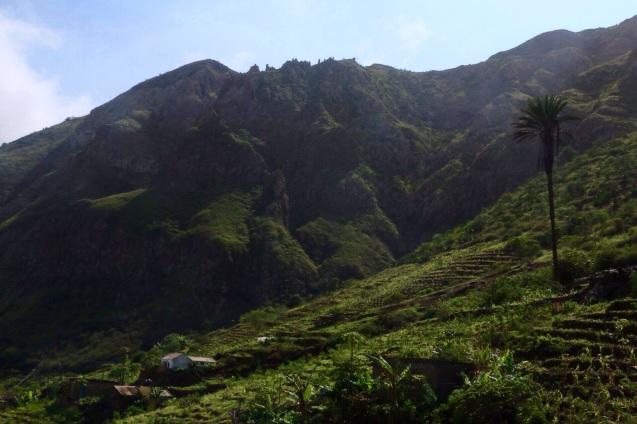 Cultures en terrasses à Sao Nicolau