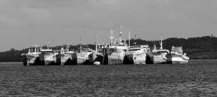 Port de Suva - Bateaux de pêche au mouillage